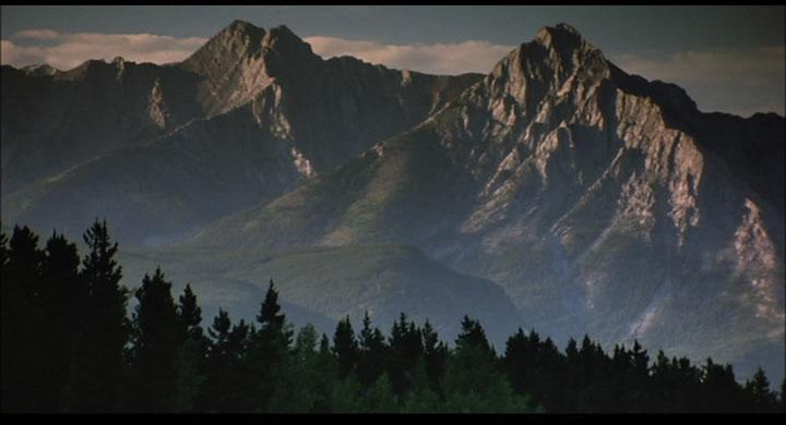 Brokeback Mountain No 63 Wonders In The Dark