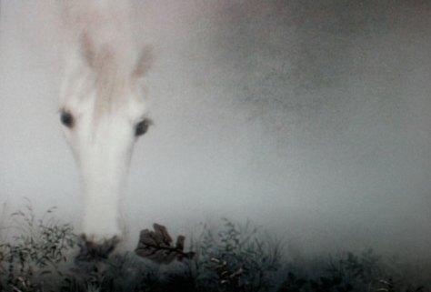 Image result for hedgehog in the fog