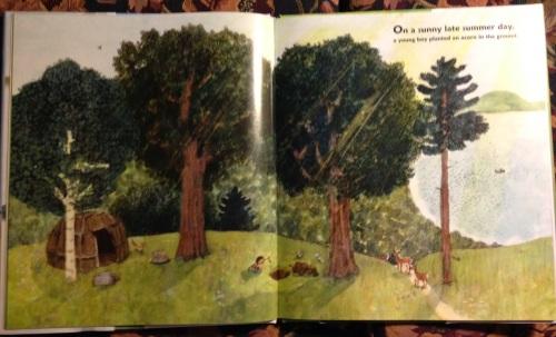 as an oak 5