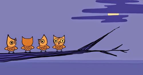 night owl 3