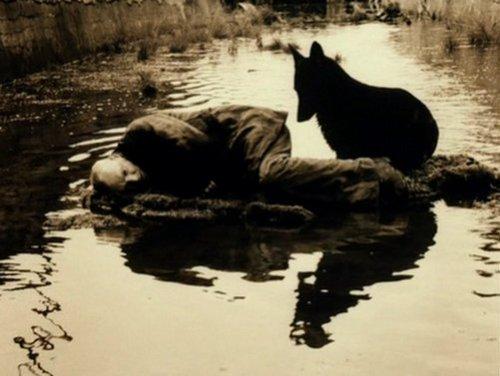 stalker-with-dog