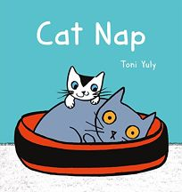 cat-nap-cover