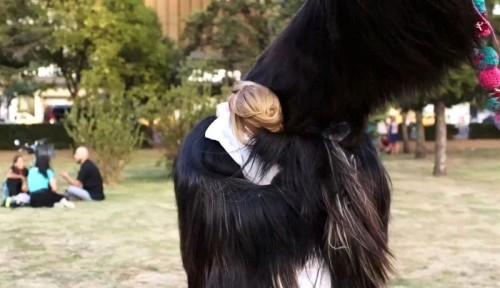 09_Toni Erdmann hug