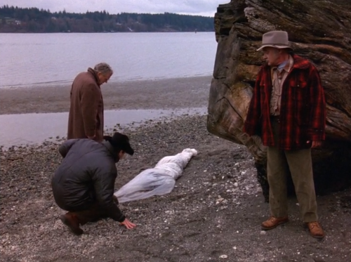 Twin Peaks s1